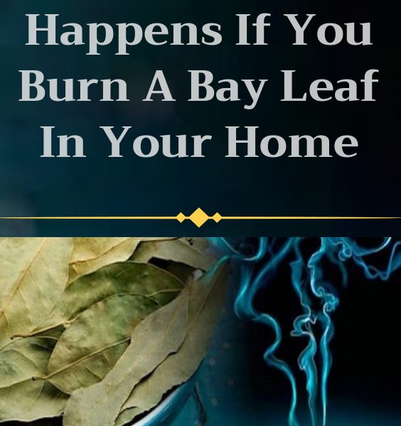 burn a bay leaf in your home